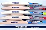 #10: Wonberry Plain Light Weight English Willow Cricket Bat T20 Format Big Edges 40-44mm