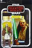 Qui-Gon Jinn Final Battle VC75 Star Wars The Vintage Collection von Hasbro