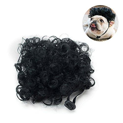 Sforza Haustier Hund Hohe Temperatur-Draht Perücke Tier-Accessoires Tierkopfbedeckung Haustier Kostüm Löwe Cosplay für Hunde Katze ()