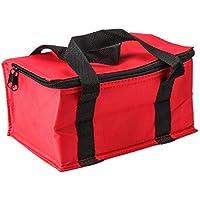 Bolsa de almuerzo aislada de gran capacidad, plegable, bolsa de almuerzo para camping, picnic al aire libre, para niños, mujeres y hombres