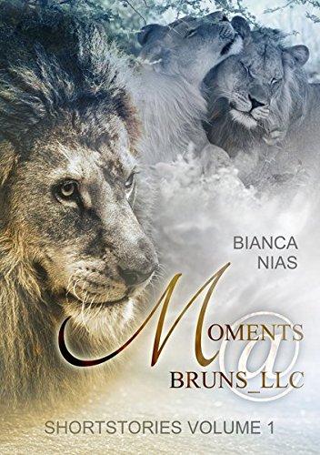 Preisvergleich Produktbild Moments@Bruns_LLC: Shortstories Volume 1