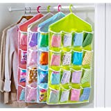 Swarg One Pearl 16-Grid Polyester And Polyester Blend Hanging Storage Bag And Organizer Pouch