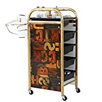 CVFDGETS Trolley Salon SPA Barber Shop Barber Beauty Storage Cart Coloring Tray With 5 Drawers Hair Dryer Holder For Tool Storage Strong Carrying Capacity,C