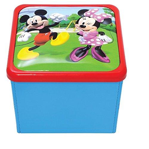 DISNEY JUNIORS Mickey Maus und der Roadster Racers Sit N Store Cube
