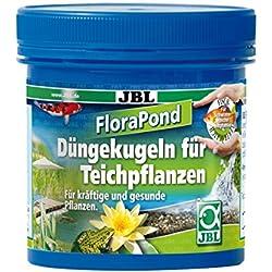 JBL 27380CONCIME PER PIANTE ACQUATICHE, 8pezzi, 30mm, Flora Pond