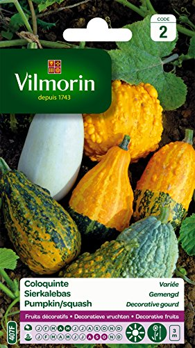 Vilmorin 5237842 Coloquinte, Multicolore, 90 x 2 x 160 cm