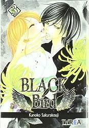 Black bird 03