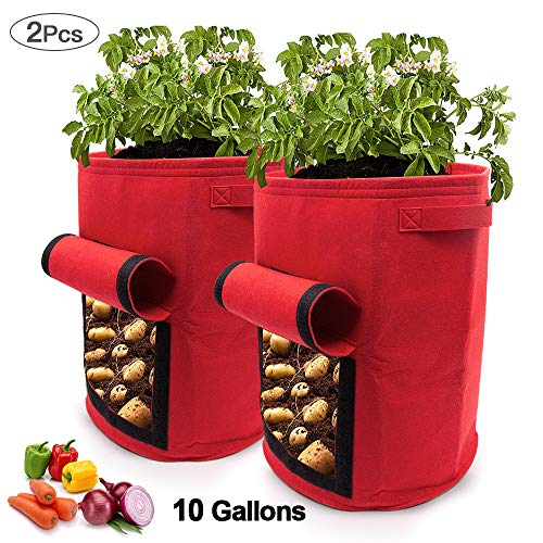 SPECOOL Kartoffel Pflanzsack, 2 pc Klettverschluss Tragegriffen Wachstumstasche 10 Gallonen Vecro Fenster Gemüsebeutel doppelschichtig, atmungsaktiv Vliesstoff (Rot)