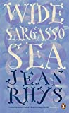 Wide Sargasso Sea (Penguin Essentials, Band 12)