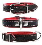 Zweifarbiges Echt Leder Hundehalsband S M L XL XXL für kleine bis sehr große Hunde schwarz rot S