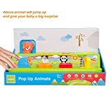 #6: Baybee Boppin Activity Bugs | Play Favorites Busy Poppin Pals | Brilliant Basics Pop-up Activity Colorful Animal Shapes & Colors Early Development Toys