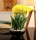 Fourwalls Artificial Tulip Flower in a Ceramic Vase (26 cm, Yellow)