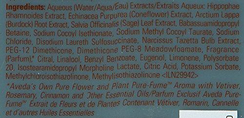 Aveda Scalp Benefits Balancing Shampoo, 1er Pack (1 X 250 Ml)