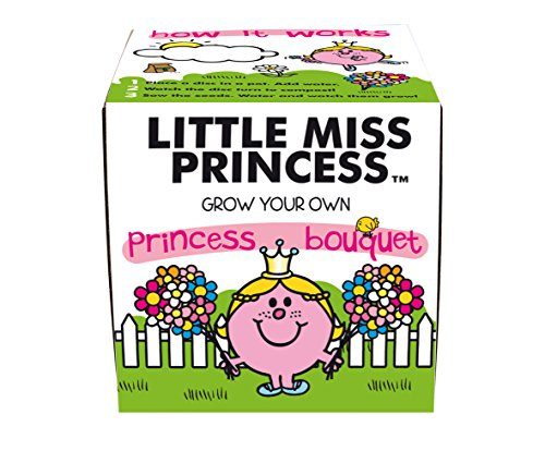 Mr Men Little Miss Princess Kit de plantation de bouquet de fleurs de princesse Multicolore