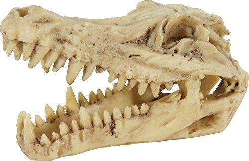 Zolux Décor pour Aquarium Crâne de Crocodile L 13 x p 6 x h 8 cm