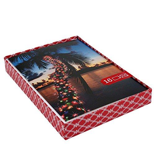 Image Arts Weihnachtskarten, Motiv: Südwest-Gruße, 16 Karten mit Umschlägen Leichte Palme
