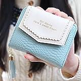 Mode Leder Geldbörse ACGE® Geldbeutel mit Knopf Damen Lange Portemonnaie (hellblau)