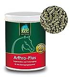 Lexa Arthro-plus 1 kg für Pferde - zur Unterstützung von Gelenken, Knorpel, Bänder und Sehnen