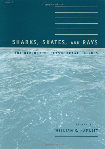 Sharks, Skates, and Rays - The Biology of Elasmobranch Fishes (Hors Catalogue) (Fisch-skate)