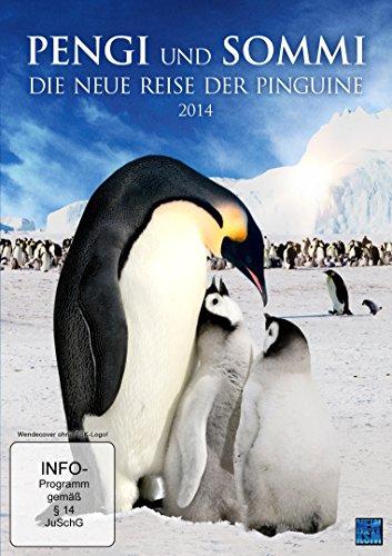 Coverbild: Pengi und Sommi - Die neue Reise der Pinguine