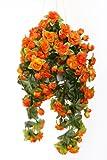 Rosen orange hängend 50 cm