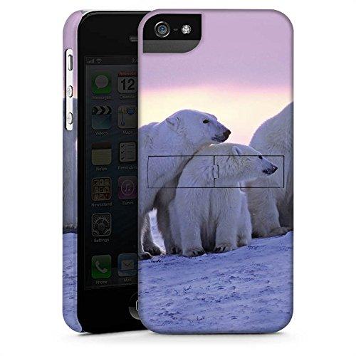 Apple iPhone 5s Housse étui coque protection Ours polaire Ours polaires Ours CasStandup blanc