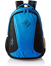 Skybags 25 Ltrs Black and Blue Casual Backpack (BPLEO5GBL)
