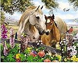 CYKEJISD Puzzle 1000 Teile DIY Geschenkdekoration Mit Zwei Pferden Klassisches Puzzle 3D Puzzle Holzspielzeug Einzigartiges Geschenk Home Decor