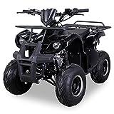 Kinder Quad S-8 Farmer 125 cc Motor Miniquad 125 ccm schwarz Toronto
