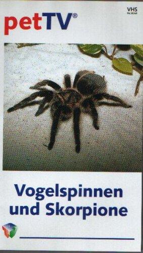 Vogelspinnen und Skorpione - Pet TV