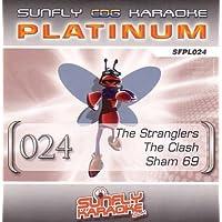 Sunfly Karaoke @ Amazon co uk: