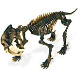 Cazadores Dr. Steve CL1508K - Paleo Expedición Kit Dino Dig: Modelo Smilodon