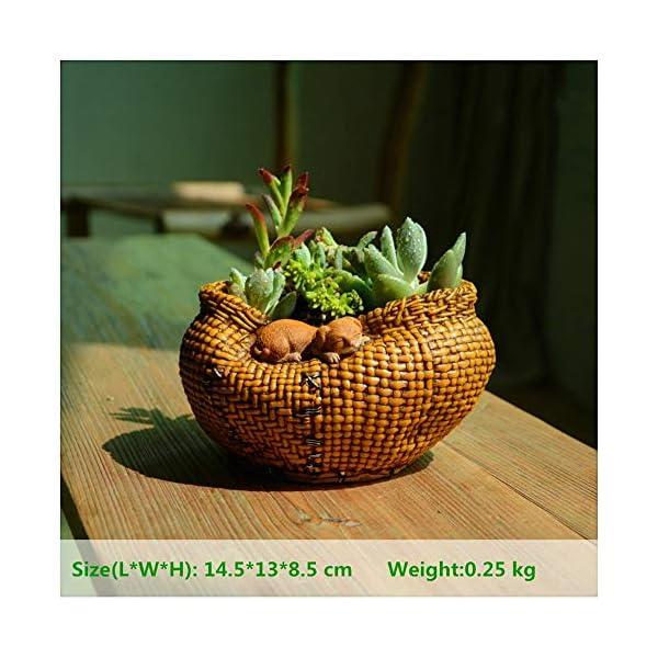 LASISZ Everyday Collection Canasta de bambú para Gato Decoración para el hogar Accesorios y decoración de Jardines de Hadas y macetas Decoradas, 4