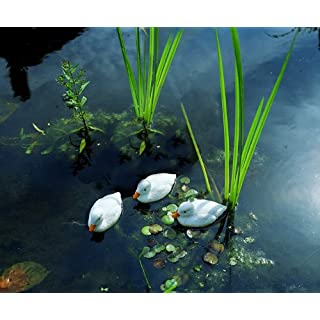 Altadex m231623 – Duck White 9 cm 1 Unit