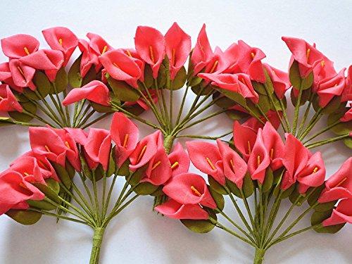 Handgefertigte Rote Tasche (Danapp Mini Künstliche Blumen Calla mit Parabel PE Material handgefertigt DIY Plant (über 144Blumen eine Tasche), plastik, rot, 1)