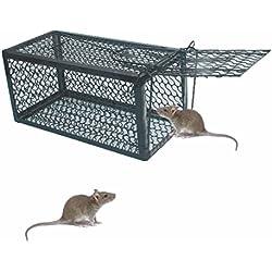 TIFANTI ratón Hierro Jaula Trampa, Humano para ratón, Ratas, Hamster, Topo, Mustela, Gopher y más pequeños roedores Jaula Trampa