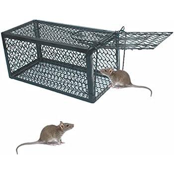 warkhome mausefalle kastenfalle falle lebendes tier k fig falle bekommen von maus m use. Black Bedroom Furniture Sets. Home Design Ideas