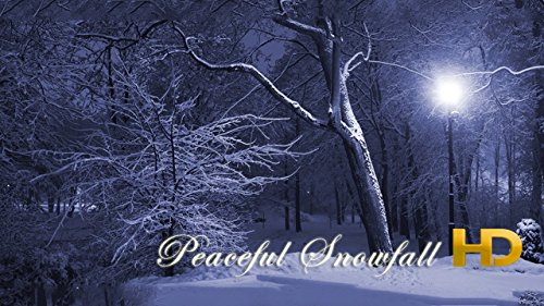 Peaceful Snowfall HD - 3