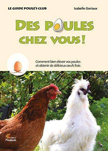 Des poules chez vous ! lever des poules avec Poule's Club