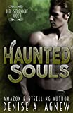 Haunted Souls: Deep Is The Night Trilogy Book 3 (English Edition)