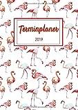Terminplaner 2019: Dein Terminkalender und Terminplaner in A5 für 2019 - Notiere, Plane und Organisiere ab sofort deinen Alltag