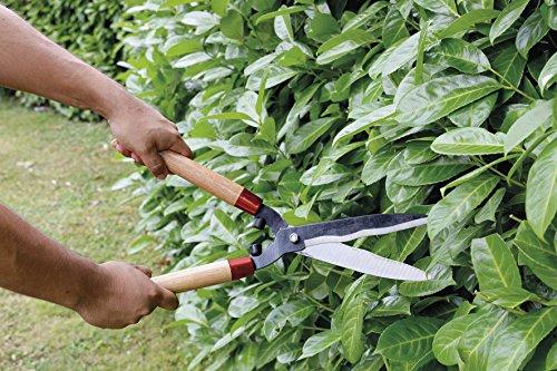 Greengeers 78628Heckenschere mit Holzgriff