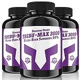 TRIBU-MAX-2000 = 480 Tabletten für 120 Tage Versorgung | Hardcore Series Hochdosiert | Ultra High Saponin 90% | 100 % Vegan - Muskelaufbau + Potenz | Premium Qualität made in Germany