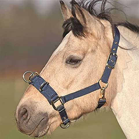 Shires Unisex Lunge Cavesson Horse Riding Equipment Equestrian Train New Navy Cob