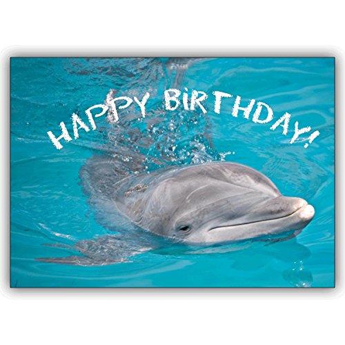 1 Geburtstagskarte: Happy Birthday : die Tier Foto Grußkarte mit Delfin