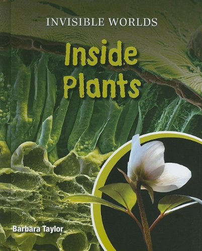 Inside Plants (Invisible Worlds)