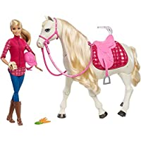 Barbie FRV36 Dreamhorse Doll