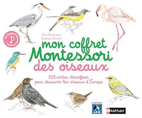 mon-coffret-montessori-des-oiseaux