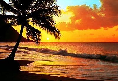 1art1 40542 Strände - Sonnenuntergang Am Pazifik 8-teilig, Fototapete Poster-Tapete (368 x 254 cm) von 1art1 bei TapetenShop