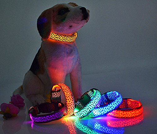 LED Halsband in verschiedenen Farben und Größen – Wasserdichte Halsbänder LED-Blinklicht-Band-Gurt für Haustiere Hunde und Katzen – Direktversand aus Deutschland von ETU24® (Grün, 50 Zentimeter) - 2